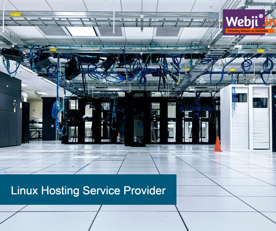 Best Linux Hosting Service Provider
