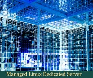Managed Linux Dedicated Server